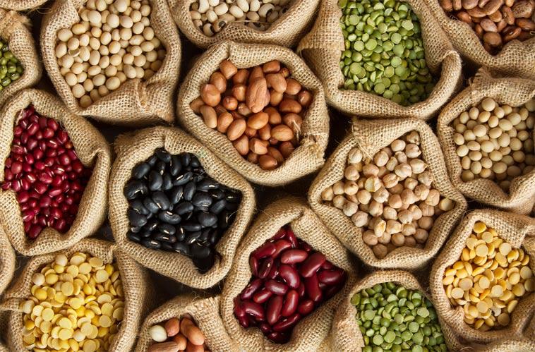 Kdy se které potraviny objevily v českých zemích - fazole