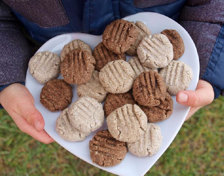 Sušenky (nejen) pro děti